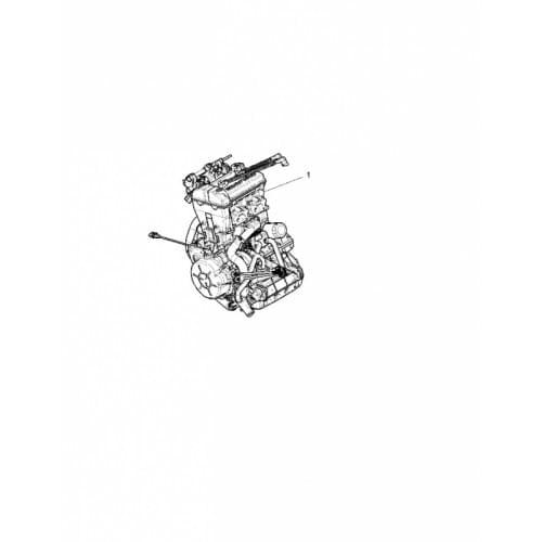 Двигатель оригинальный для Polaris RZR 1000 220524...